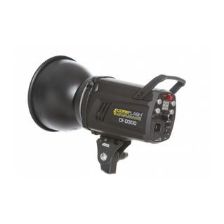 Coreflash CF-D300
